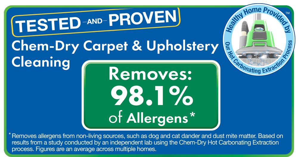 chem dry removes 98% of allergens and 89% of bacteria from carpets