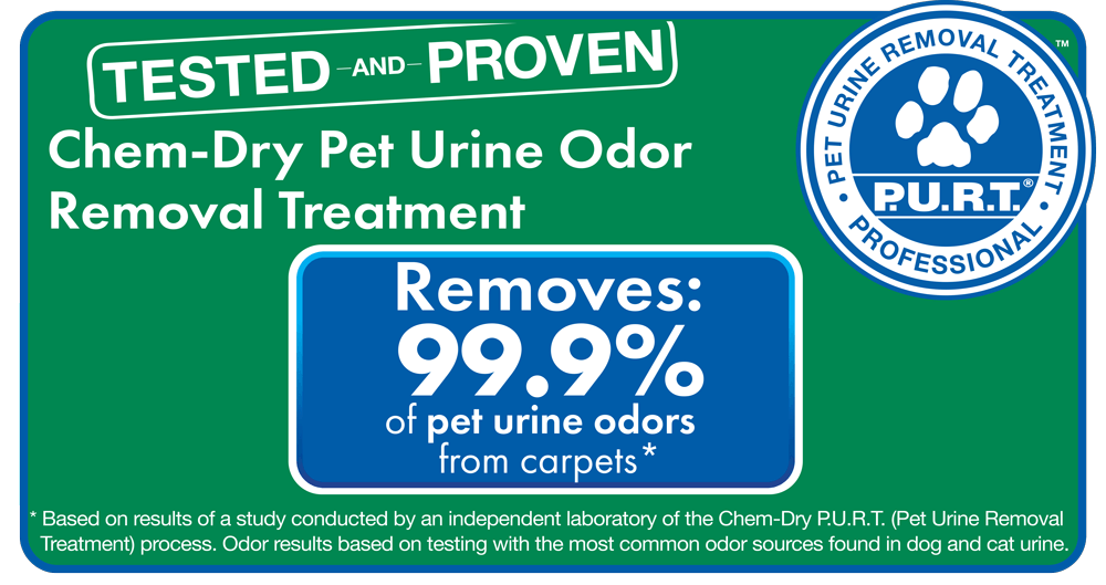 chem-dry removes 99.9% of odors and 99.2% of bacteria from carpets